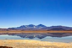反射性的湖 库存照片