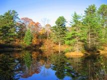 反射性缅因的池塘 库存图片