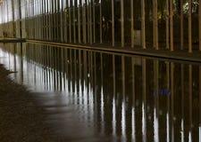 反射比赛在水的 免版税库存照片
