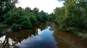 反射河 库存图片