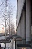 反射的水在大阪日本 库存照片