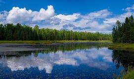 反射,湖阵风,明尼苏达 免版税库存照片