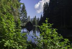 反射, AŒogrljevoo湖,克罗地亚 库存图片