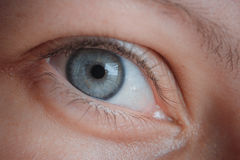 反射:人宏观射击的眼睛 免版税库存照片
