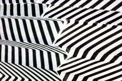反射黑白条纹 图库摄影