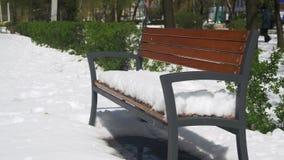 反常天气在4月 用雪盖的长凳在绿色灌木背景的一个公园  股票录像