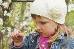 反弹在嗅到一棵小的樱桃bl的庭院美丽的女孩 免版税库存图片