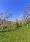 反弹在山在拉赫季附近阿塞拜疆村庄  免版税库存图片