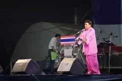 反政府拒付 免版税库存图片