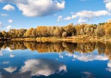 反映在森林湖秋天树 免版税库存图片