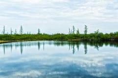 反映在水中 免版税库存图片
