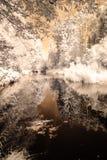 反映在湖 红外图象 免版税库存照片