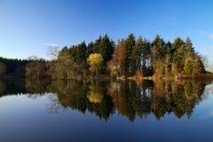 反映在湖 库存照片