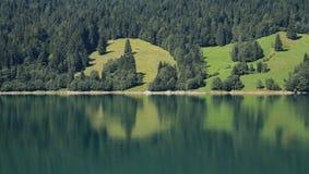 反映在湖Waegitalersee的森林和绿色草甸 免版税库存图片