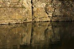 反映在水中 库存照片