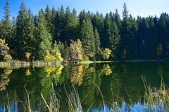 反映在Vrbicke上塔恩省的水平面在Demanovska谷的在斯洛伐克 免版税库存照片