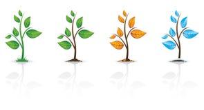反映季节性结构树 库存例证