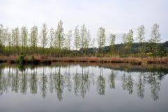 反映河 免版税图库摄影