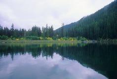 反映的湖 免版税库存照片