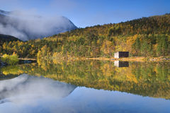 反映的秋天森林 库存图片