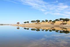 反映葡萄牙结构树的alentejo蓝色湖 库存图片