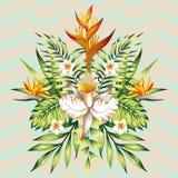 反映从热带花的暑假构成并且离开 免版税库存照片