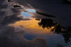 水反映 库存图片