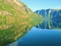 反映sognefjord 库存照片