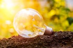 发光在土壤太阳火光的电灯泡弄脏了背景 图库摄影