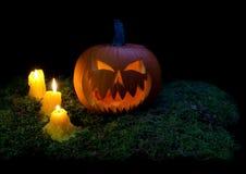 发光在森林mo的黑暗的万圣夜南瓜和蜡烛 库存图片