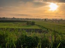 发光在绿色领域和轻轻地绵延山的太阳 库存图片