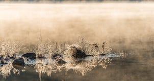 发光在霜的阳光涂上了岩石,并且在水的草渐近 变冷在隔夜11月空气之前 免版税图库摄影