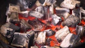 发光在bbq格栅坑的热的火焰状木炭冰砖TView  烹调的烤肉食物灼烧的煤炭 关闭 股票录像