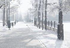 发光由阳光的不可思议的冬天城市公园 斯诺伊镇风景 在霜后照光太阳作用的美丽的树 免版税库存照片