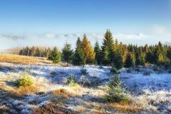 发光由阳光的冬天风景 严重的场面 风景雾 免版税库存图片