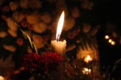 发光的信念在11月 图库摄影