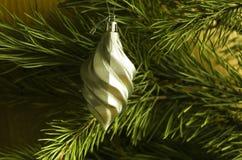 发光的圣诞树在背景、广告和设计的一个绿色杉木分支戏弄 免版税库存照片