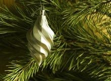 发光的圣诞树在背景、广告和设计的一个绿色杉木分支戏弄 库存照片