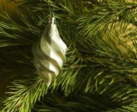 发光的圣诞树在背景、广告和设计的一个绿色杉木分支戏弄 库存图片