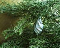 发光的圣诞树在背景、广告和设计的一个绿色杉木分支戏弄 图库摄影