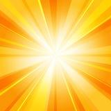 发光的太阳幅射器背景 向量例证