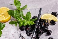 发光的寒冷的宏观图片击碎了在灰色背景的冰 冰用黑莓、裁减酸柠檬和薄荷叶 免版税库存照片