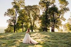 发光的新娘在晚上光光芒站立  免版税库存照片