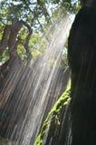发光的瀑布 库存图片