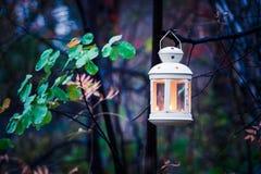 发光的灯笼在秋天森林里 免版税库存照片