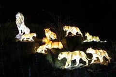 发光的狮子时装模特 免版税图库摄影