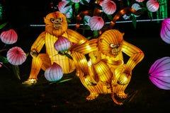 发光的猴子时装模特 免版税库存照片