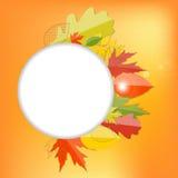 发光的秋天自然叶子背景 向量 免版税库存照片