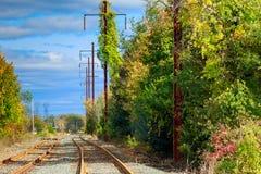 发光的钢铁轨带领眼睛低谷树 库存图片