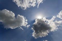发光通过白色松的云彩和蓝天的太阳光芒 图库摄影